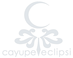 Eclipsi Photography by Cayupe